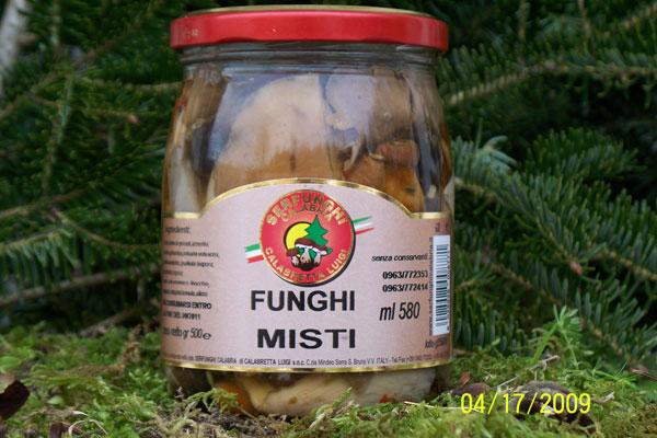 FUNGHI MISTI