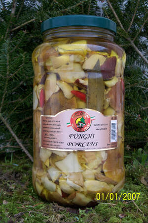 FUNGHI PORCINI TAGLIATI ml 3100-580